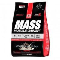 Elite Labs Mass Muscle Gainer 4608 Gr Çikolata